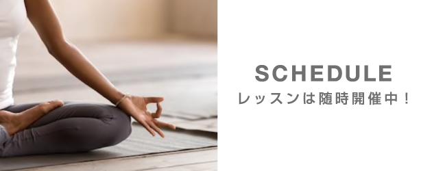 SCHEDULE - スケジュール