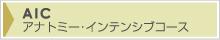 AIC(アナトミー・インテンシブコース)